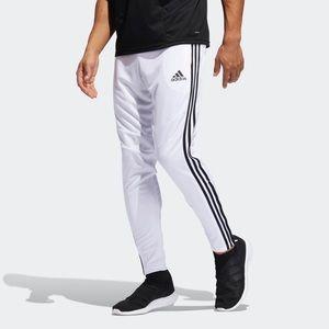 Adidas Training Pants White with Black Stripe